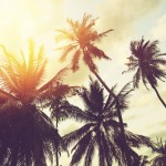 HR and I.T - dodge the holiday dilemma and make life a beach